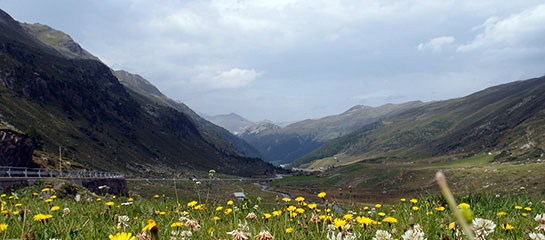 Flüelapass (2383 m)